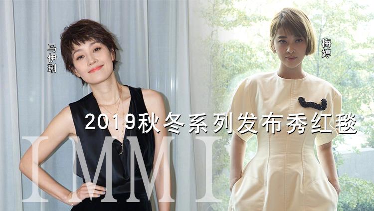 IMMI 2019秋冬系列发布秀红毯