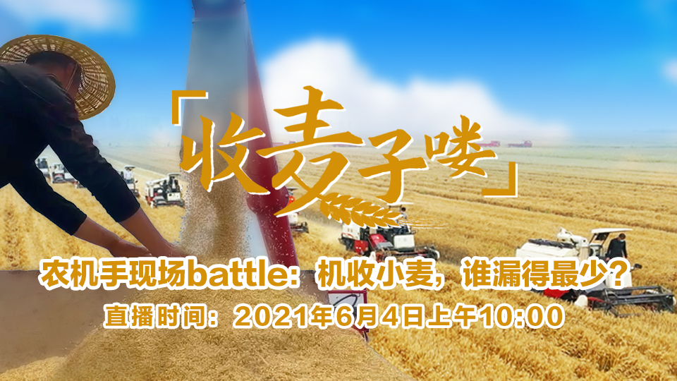 农机手现场battle:机收小麦,谁漏得最少?