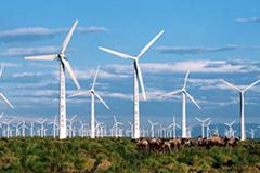 新能源专题