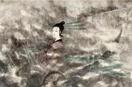 假如没有徐悲鸿和郭沫若 傅抱石还会不会成为拍场传奇?