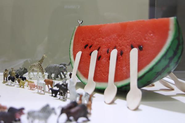 西瓜切片是动物的诺亚方舟。图/邱家琳摄。