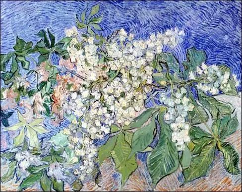 梵高的《正在开花的栗树枝》